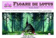 floare_de_lotus_nr3
