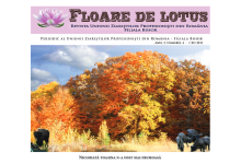 floare_de_lotus_nr4